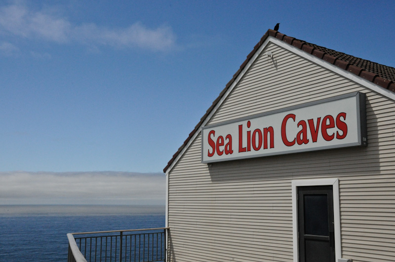 Sealioncaves-6