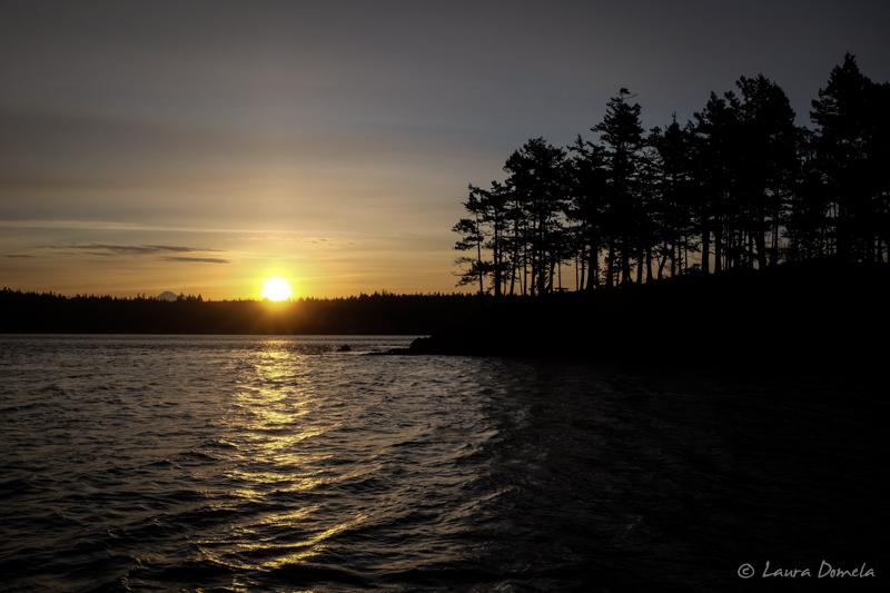 Cypress_sunrise-6284