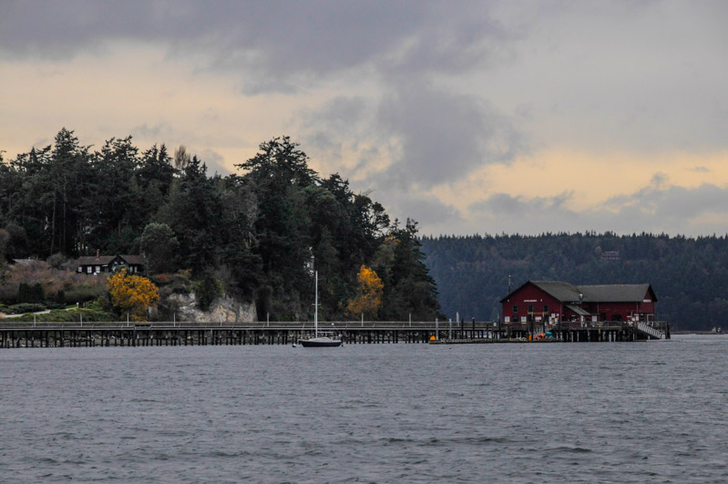 Whidbey-6057