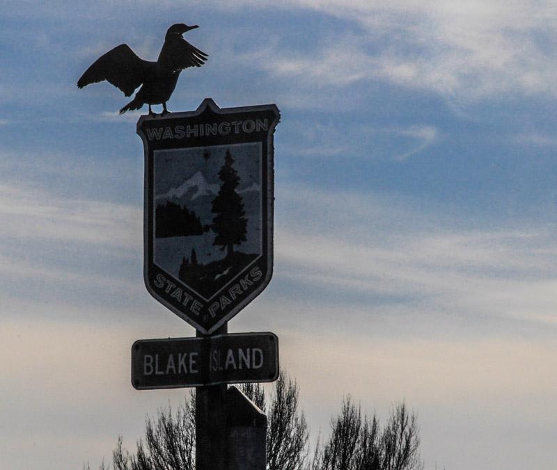 Blakeisland-6740