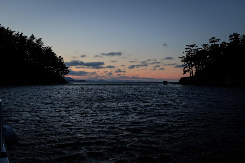 Patos_sunset-3558
